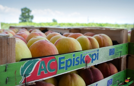 AC Episkopi Peaches