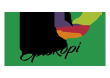 AC Episkopis Naoussas Logo